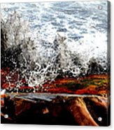Splash On The Wood Acrylic Print by Nelly Avraham