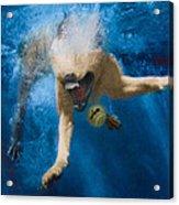 Splashdown 2 Acrylic Print