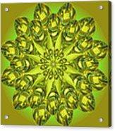 Spoonz Acrylic Print by Linda Pope