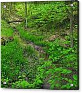 Spring At Cleveland Metro Park Acrylic Print