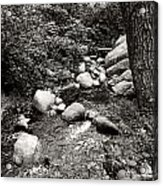 Spring Creek II Acrylic Print