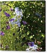 Spring Garden 2 Acrylic Print