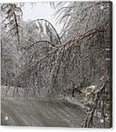Spring Ice Storm Acrylic Print
