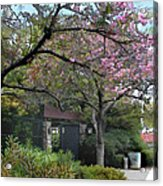 Spring In Bloom At The Japanese Garden Acrylic Print
