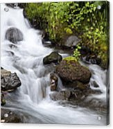 Spring In The Gorge Acrylic Print