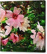 Spring Is In Blossom Acrylic Print