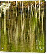 Spring Morning Reflections Acrylic Print