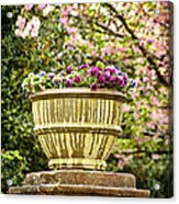 Spring Showers Acrylic Print