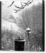 Spring Snowstorm 2012 Acrylic Print