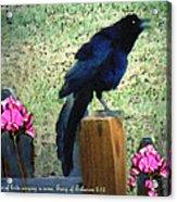 Spring Song II Acrylic Print