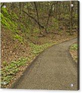 Spring Trail Scene 4 Acrylic Print