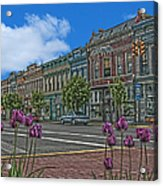 Spring Tulips Downtown Georgetown Acrylic Print