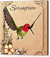 Springtime - Hummingbird Acrylic Print