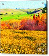 Springtime In The Golden Hills . 7d12402 Acrylic Print