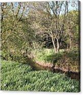 Springtime Meadow Acrylic Print