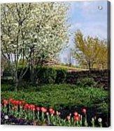 Sprung Spring Acrylic Print