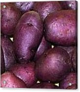 Spuds Acrylic Print
