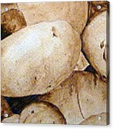 Spuds Acrylic Print by Linda Pope