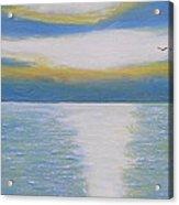 St Lawrence River Eagle Acrylic Print