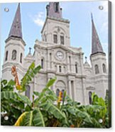 St Louis Cathedral Rising Above Palms Jackson Square French Quarter New Orleans Print  Acrylic Print