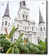 St Louis Cathedral Rising Above Palms Jackson Square New Orleans Diffuse Glow Digital Art Acrylic Print