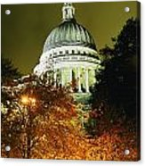 St Pauls Cathedral At Night With Trees Acrylic Print