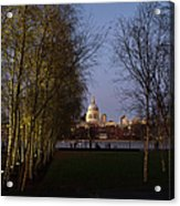 St Paul's With Silver Birches Acrylic Print