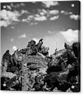 Stack Of Peat Turf Gathered Dried In Ireland Acrylic Print