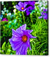 Standin Out Acrylic Print