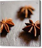 Star Anise On Slate Tray Acrylic Print by Alexandre Fundone