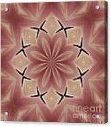 Star Magnolia Medallion 4 Acrylic Print