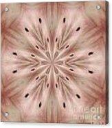 Star Magnolia Medallion 6 Acrylic Print
