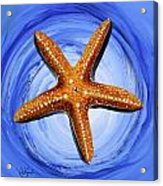 Star Of Mary Acrylic Print by J Vincent Scarpace