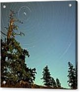 Star Trails, North Star And Old Douglas Acrylic Print