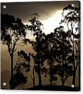 Stark Acrylic Print by Lee Stickels