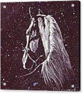 Starlight Serenade Acrylic Print