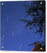 Stars Falling Acrylic Print