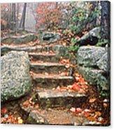 Steps Cloudland Canyon Acrylic Print