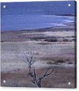 Stevenson Lake Acrylic Print
