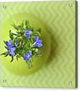 Still Life In Delicate Green Acrylic Print