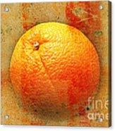 Still Life Orange Abstract Acrylic Print