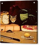 Still Life With Cat And Mouse Acrylic Print