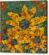 Stimuli Floral - S04ct01 Acrylic Print by Variance Collections