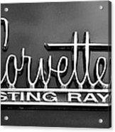 Sting Ray Acrylic Print