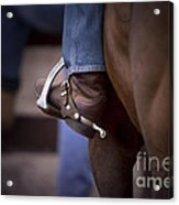 Stockhorse And Spurs Acrylic Print