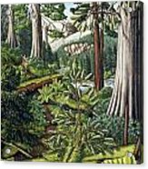 Stoltman Old Growth Forest Landscape Painting Acrylic Print