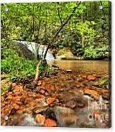 Stone Mountain Lower Falls Acrylic Print