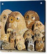Stone Owls Acrylic Print