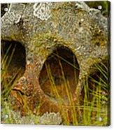 Stone Skull Acrylic Print