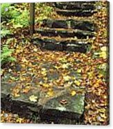 Stone Stairway In Forest, Cape Breton Acrylic Print